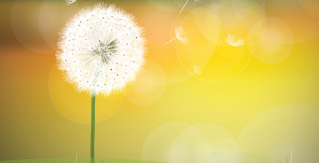 Next Grief & Bereavement Session 23/07/20